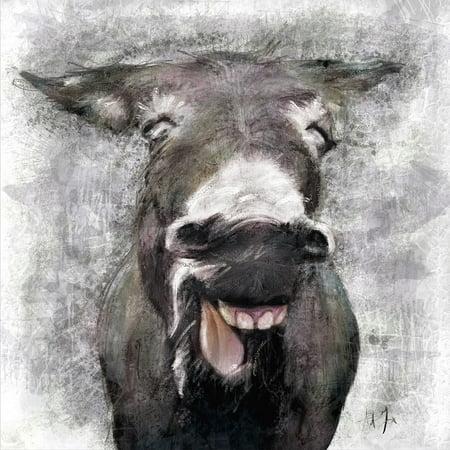 Donkey Poster Print by AV Art (12 x 12) ()