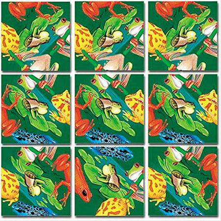 Scramble Squares: Frogs (Birds Scramble Squares)