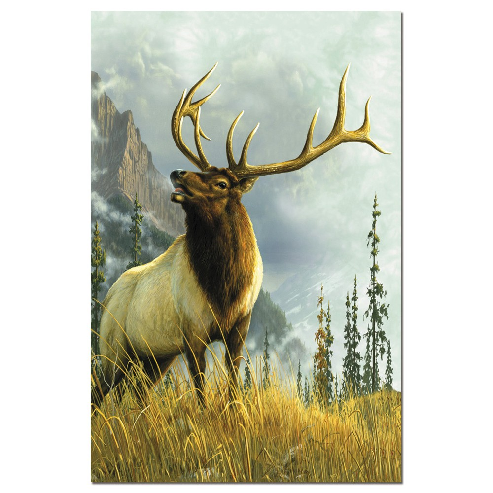 Tree-Free Greetings High Country Elk Econotes Blank Note Cards-FS66683