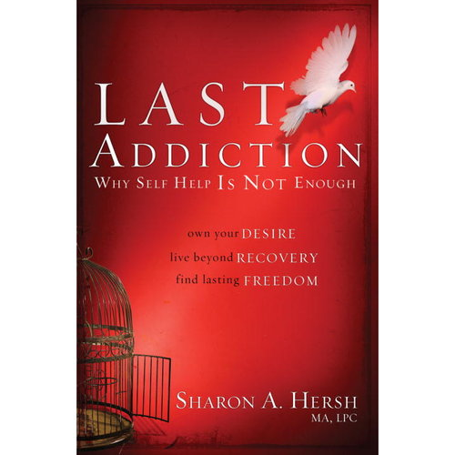 The Last Addiction: Why Self Help Is Not Enough: Own Your Desire, Live Beyond Recovery, Find Lasting Freedom