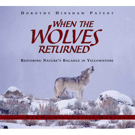 Balanced Returns - When the Wolves Returned : Restoring Nature's Balance in Yellowstone
