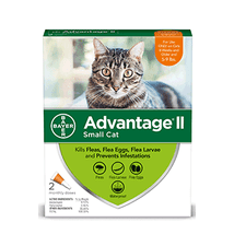 Cat Medication & Health Supplies: Bayer Advantage II for Cats