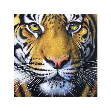 Golden Tiger Face 1000 pc Jigsaw Puzzle, Golden Tiger Face 1000 pc Jigsaw Puzzle By SunsOut (Jigsaw Face)