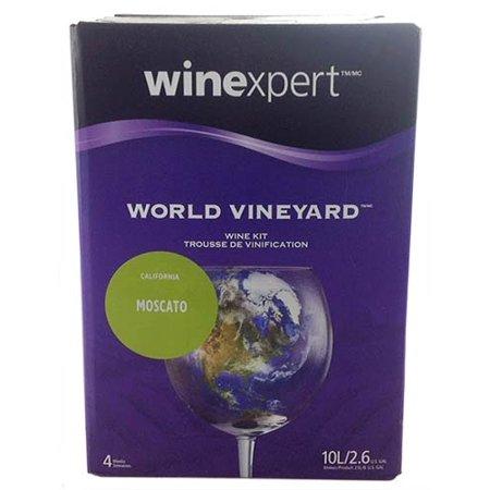 World Vineyard California (Moscot Lemtosh)