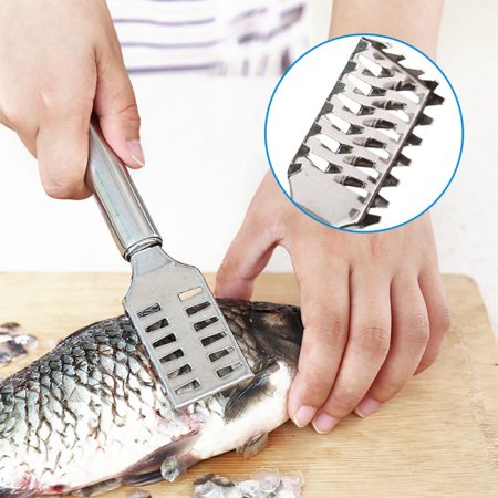 Fish Scale Scraper Stainless Steel Manual Scaler Remover Kitchen (Best Fish Scale Remover)
