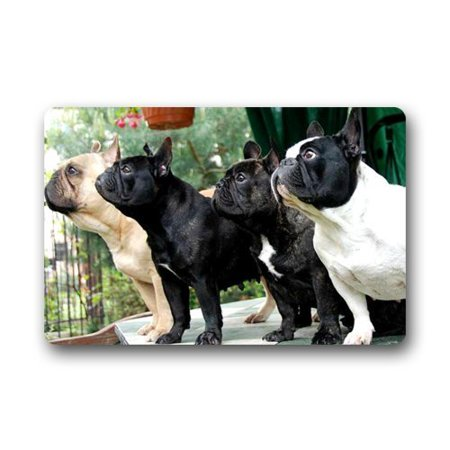 WinHome French Bulldog Pack Doormat Floor Mats Rugs Outdoors/Indoor Doormat Size 23.6x15.7 inches