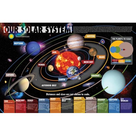 Smithsonian- Our Solar System Poster - 36x24 (Muscular System Poster)