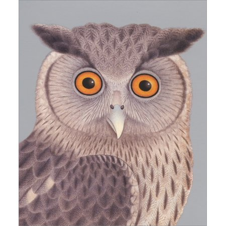Archivist Eagle Owl with Bright Orange Eyes Blank Note Card](Printable Eyes)