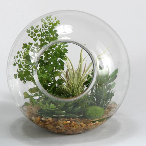 D & W Silks Flat Iron Fern, Easter Grass and Tillandsia Desk Top Plant in Decorative Vase