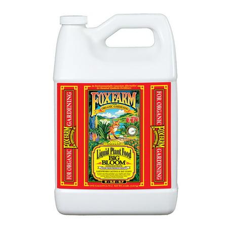 FoxFarm Big Bloom Liquid Concentrate Organic Plant Food, 1 Gallon | (Liquid Bloom Quart)