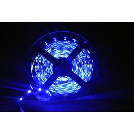 Lytheled 24w flexible led strip lights blue 300 units smd 5050 lytheled 24w flexible led strip lights blue 300 units smd 5050 leds aloadofball Gallery