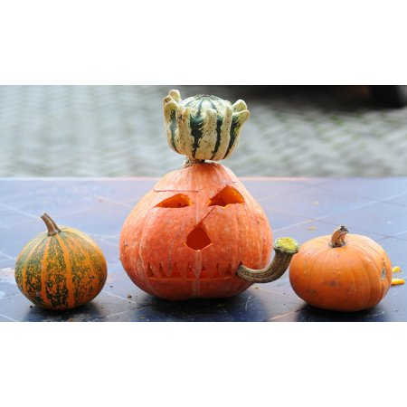 LAMINATED POSTER Gourd Pumpkin Halloween Orange Pumpkin Ghost Poster Print 24 x 36