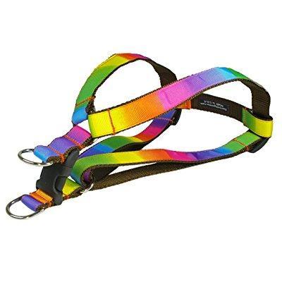 sassy dog wear 23-35-inch rainbow dog harness, large