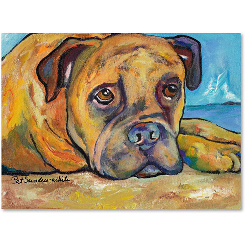 "Trademark Fine Art ""Lexie"" Canvas Art by Pat Saunders-White"
