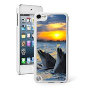 For Apple iPod Touch 5th / 6th Generation Hard Back Case Cover Dolphins Laughing in Sunset (White)