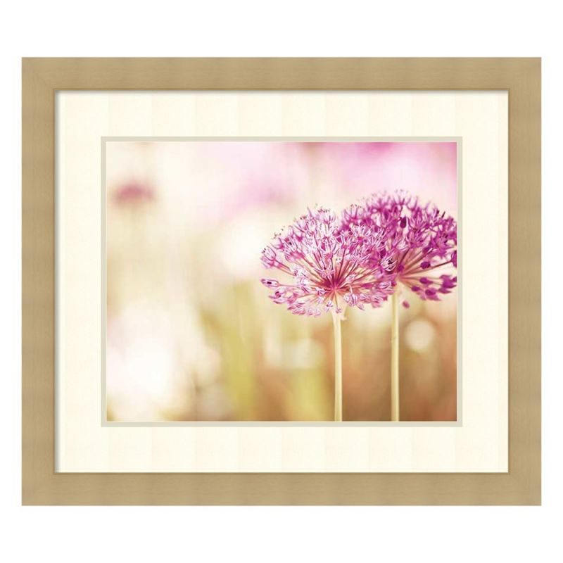 Amanti Art Bloom by Carolyn Cochrane Framed Photographic Print by Amanti Art