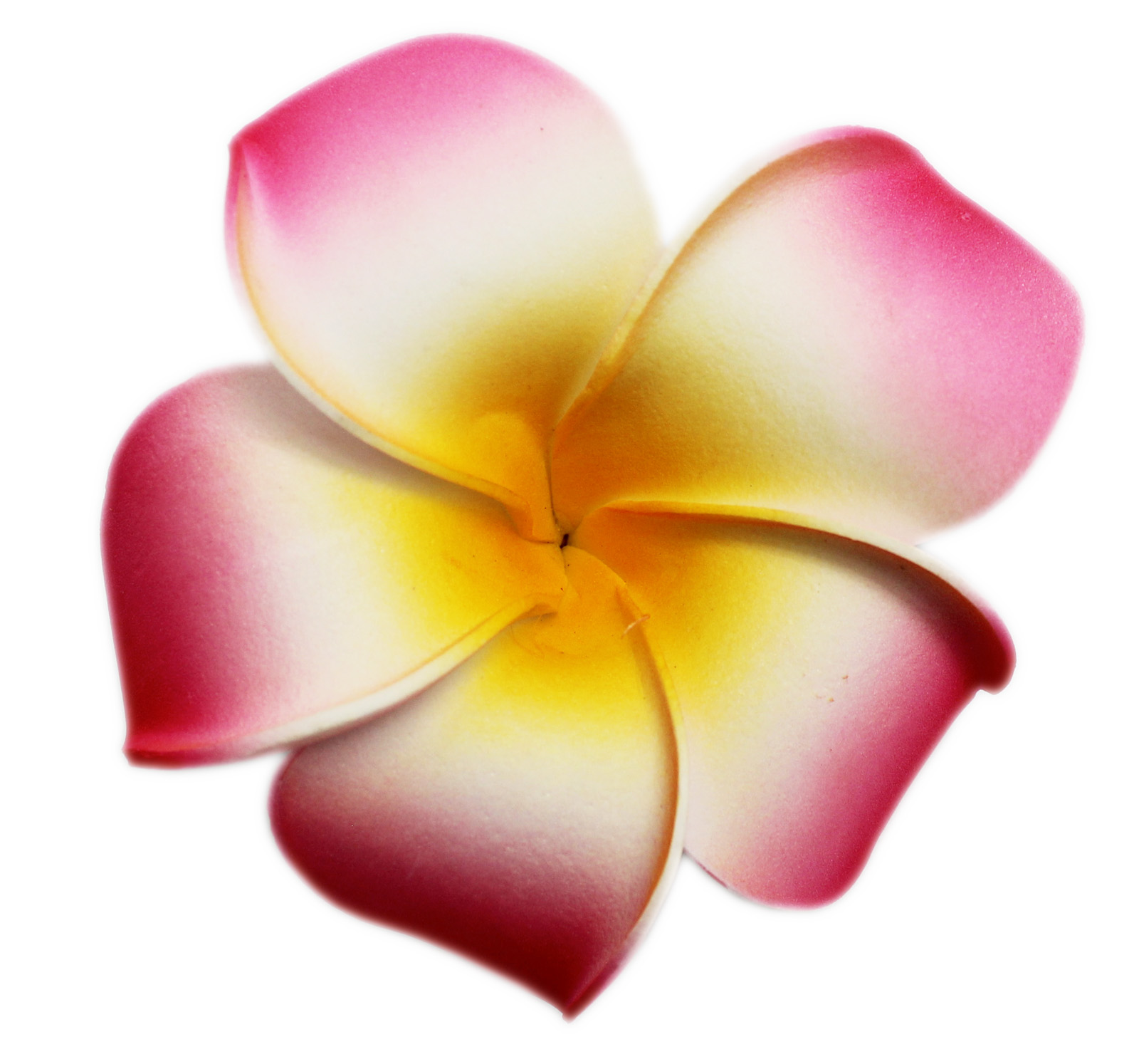 Tropical Flower Fashion Hair Barrette: Pink and Yellow