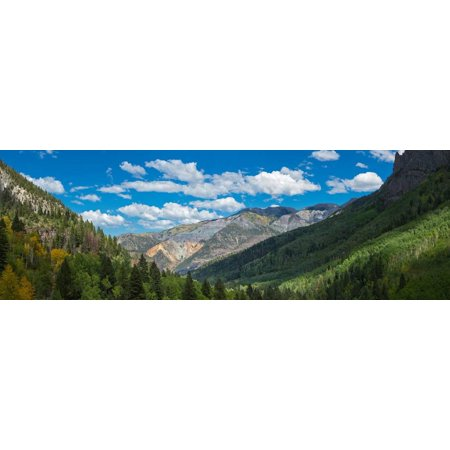 Elevated view of trees on landscape along Country Road 361, Camp Bird Road, San Juan Mountains,... Print Wall Art (361 Wall)