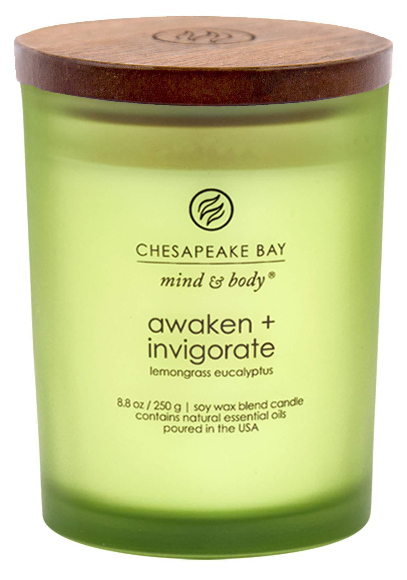 Chesapeake Bay Candle Scented Candle, Awaken + Invigorate ...