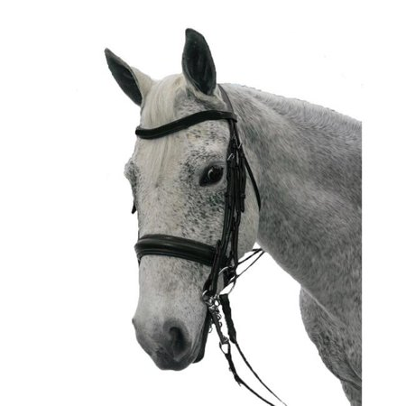 Exselle AEBD6155CBK Elite Plain Raised Padded Rolled Leather Double Bridle-X Brow, Black - Cob