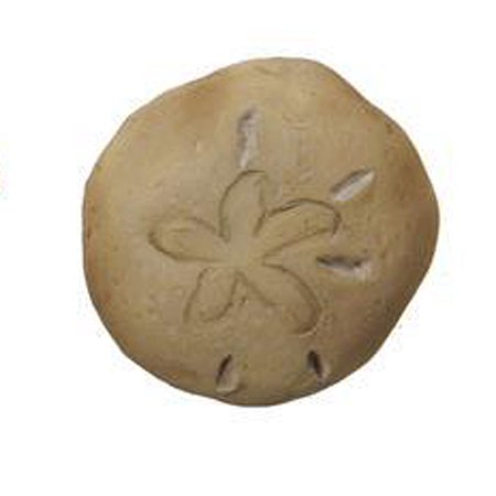 Sand Dollar Seashell Figurine - At The Shore Fantasy Collection by Ganz