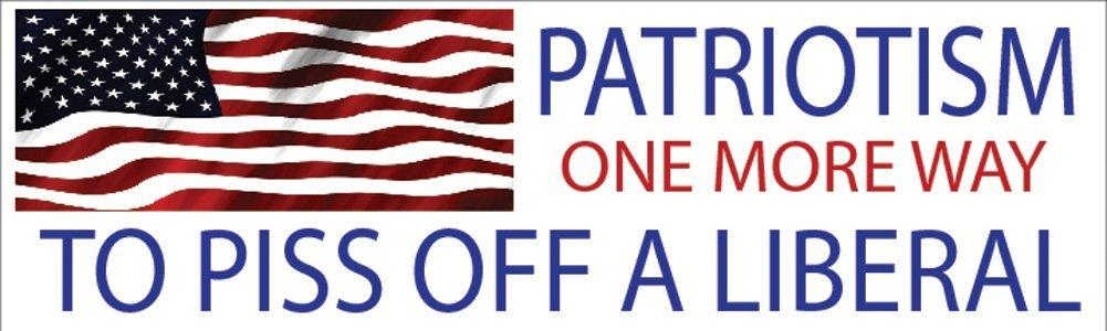 10x3 Patriotic Bumper Sticker Auto Decal USA Flag America Patriotism One More Way To Piss Off A Liberal... by Rogue River Tactical