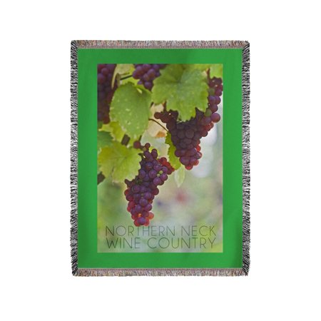 Northern Neck  Virginia   Grapes On Vine   Lantern Press Photograph  60X80 Woven Chenille Yarn Blanket