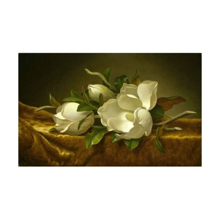 Magnolias on Gold Velvet Cloth, C. 1889 Print Wall Art By Martin Johnson - Golden Magnolia