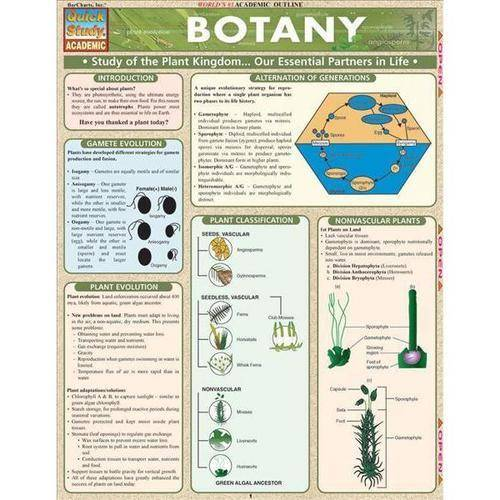 Botany: Study of the Plant Lkingdom...our Essential Partners in Life