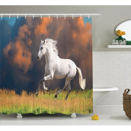 Animal Decor Shower Curtain Set, Andalusian Horse With A Majestic Dust Cloud Background Strong Desires Sign Photo, Bathroom Accessories, 69W X 70L Inches, By Ambesonne