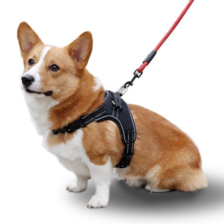 Easy Control Dog Harness Best For Outdoor Walking Training No Pull and Adjustable Pet Vest Made of Oxford Safety Seat Belt with Elastic Bungee and Reflective Stripe for Large Medium Small