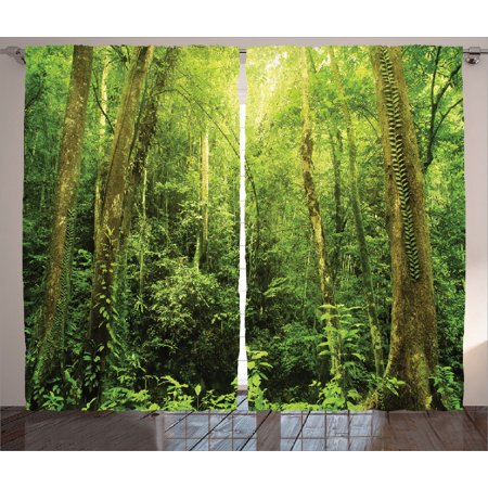 Dark Wood Window - Rainforest Decorations Curtains 2 Panels Set, Tropical Rainforest Landscape Malaysia Asia Green Tree Trunks Uncultivated Wood, Living Room Bedroom Accessories, By Ambesonne