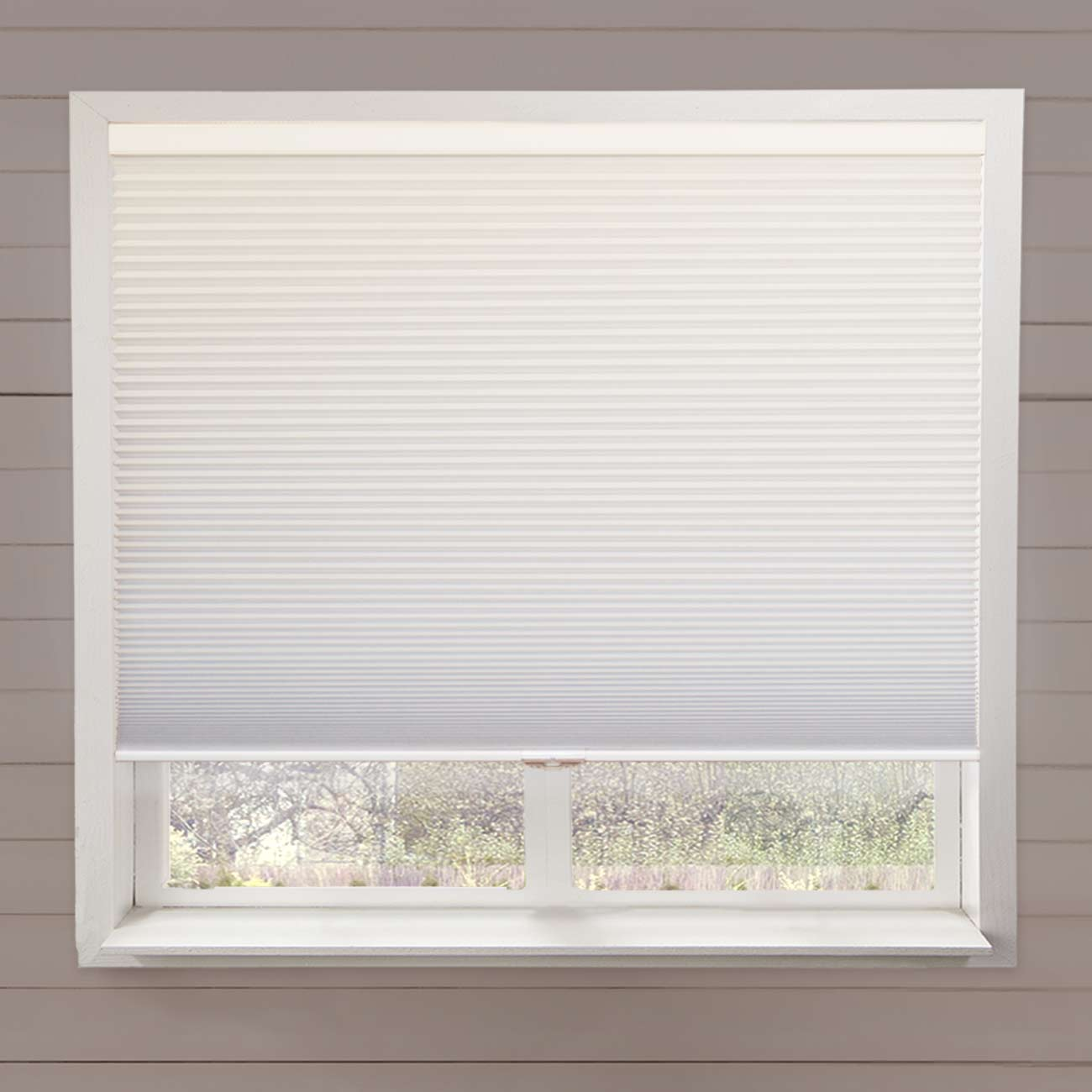 Chicology Cordless Cellular Shade, Privacy Single Cell Window Blinds