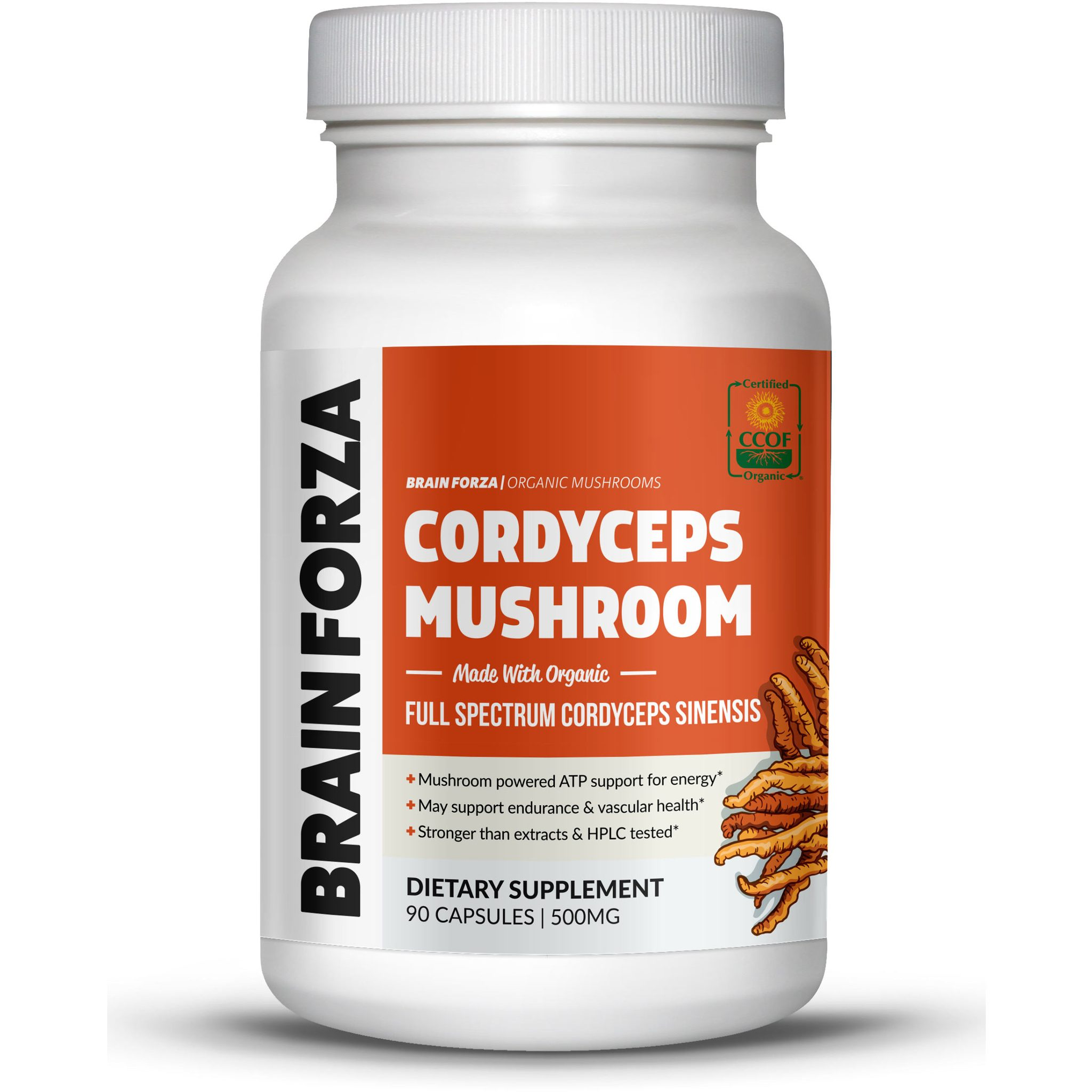 Brain Forza Organic Cordyceps Sinensis Mushroom for Energy & Endurance Support, 90 Capsules