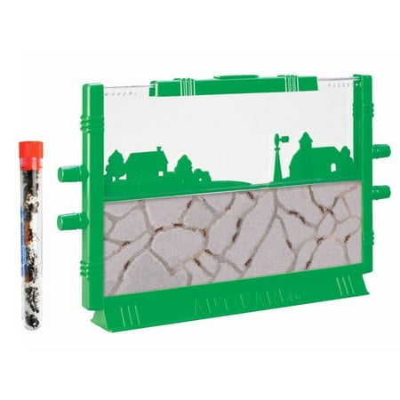 Uncle Milton Ant Farm: LIVE Ant Habitat with FREE 25 Ants: Certificate to