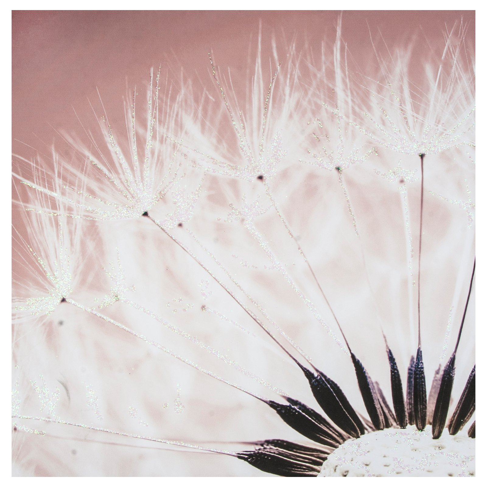 Delicate Dandelion With Glitter Canvas Wall Art - 24W x 24H in.