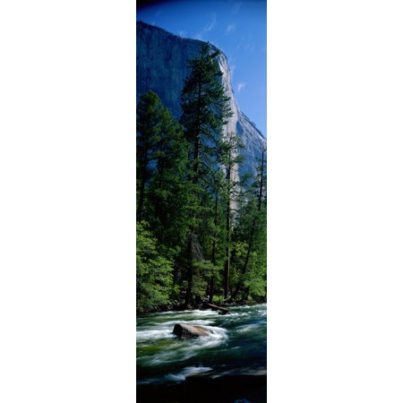 Merced River and El Capitan Yosemite National Park CA Canvas Art - Panoramic Images (27 x 9)