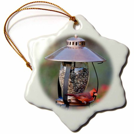 3dRose Northern Cardinal on copper lantern hopper bird feeder, Marion Co. IL - Snowflake Ornament, 3-inch