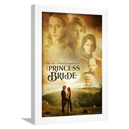 The Princess Bride 30th Anniversary Movie Framed Poster Wall (30th Anniversary Frame)