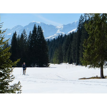 Peel-n-Stick Poster of Winter Ski Mountains Cross Country Skiing Skiing Poster 24x16 Adhesive Sticker Poster Print