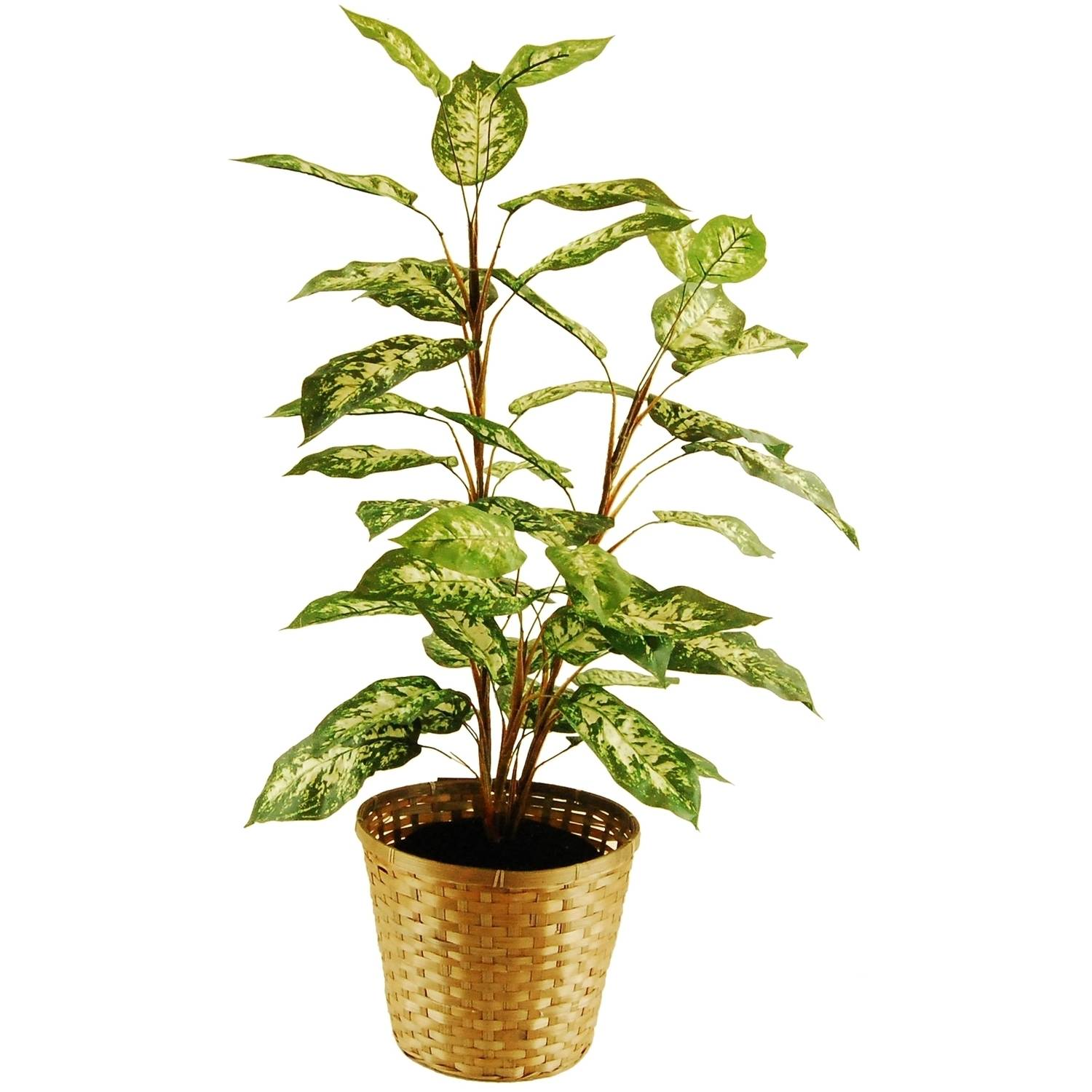 "48"" Artificial Dieffenbachia Floor Plant In a Basket with Faux Dirt"