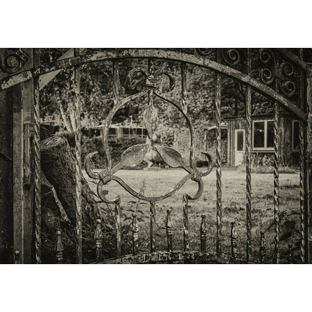 LAMINATED POSTER Fence By Looking Garden Metal Iron Wrought Iron Poster Print 24 x 36