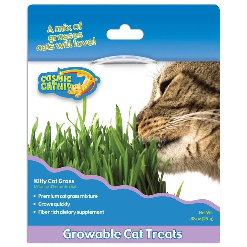 Ourpets Company-Cosmic Catnip Kitty Cat Grass- Grasses Regular by Overstock