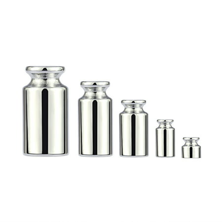 Pro 5th Scale - Weight 1g 2g 5g 10g 20g Chrome Plating Calibration Gram Scale Weight Set for Digital Scale Balance