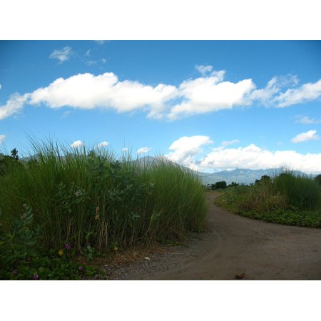 - Laminated Poster Cloud Long Road Landscape Mountain Sky Grass Poster Print 11 x 17