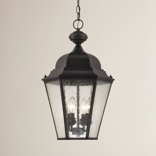 Darby Home Co Drennen 4-Light Outdoor Hanging Lantern by