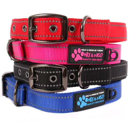 Max and Neo MAX Reflective Metal Buckle Dog Collar - We Donate a Collar to a Dog Rescue for Every Collar Sold (X-LARGE, (Metal Buckle Collar)