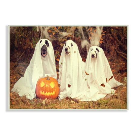 The Stupell Home Decor Collection Vintage Photography Halloween Pumpkin And Ghost Dogs Wall Plaque Art, 10 x 0.5 x 15