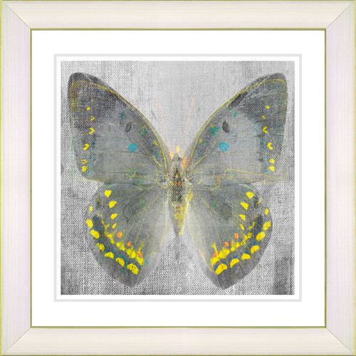 Studio Works Modern ''Dusk Butterfly - Yellow'' by Zhee Singer Framed Graphic Art in Yellow