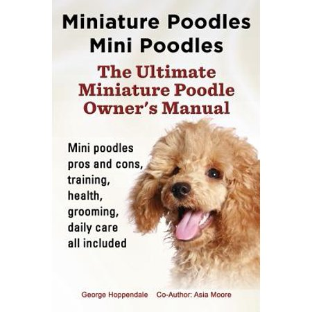 Miniature Poodles Mini Poodles. Miniature Poodles Pros and Cons, Training, Health, Grooming, Daily Care All
